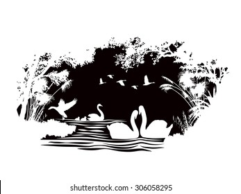 animals of wildlife (Swan)  abstract silhouette vector design