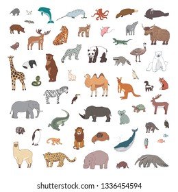Animals of the world illustrations  hand drawn vector set