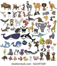 Animals,wildlife