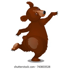 Animated dancing brown bear isolated on white background. Vector cartoon close-up illustration.