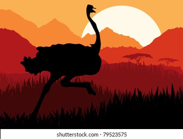 Animated running ostrich in wild nature landscape illustration