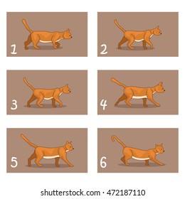 Animation cat