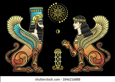 Animation color drawing: mystical winged lion and lioness with human heads. Character in Assyrian mythology. Sacred star, moon, plant. Vector illustration isolated on a black background.
