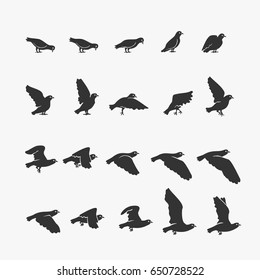 Animation Dove flying Vector Illustration