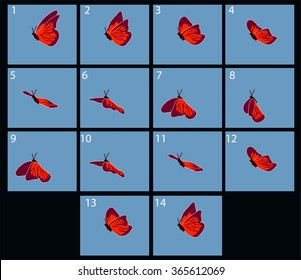 animation of flaing butterfly
