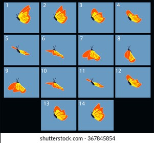 Animation of flaing butterfly. Cartoon explosion frames
