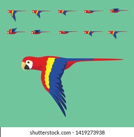 Animation Macaw Flying Cute Cartoon Vector Illustration