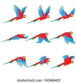 Animation parrot flies. Sprite bird flies.