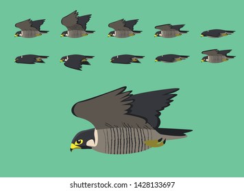 Animation Peregrine Flying Cartoon Vector Illustration