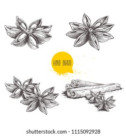 Anise star sketches set. Single, batch and composition with cinnamon sticks. Herbs and condiment retro style hand drawn collection. Vector illustrations isolated on white background.