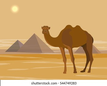 Another day in Egypt, the Great Pyramids of Giza, vector illustration