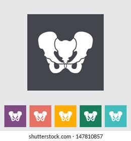 Anotomy Pelvis flat icon. Vector illustration.