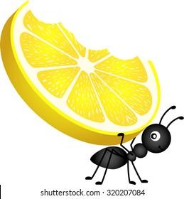 Ant carrying a lemon
