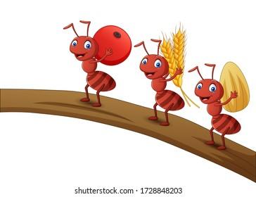 Ant Fruit Images Stock Photos Vectors Shutterstock