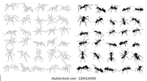 ant crawling silhouette, set, collection