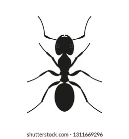 Ant icon. Black Silhouette of an ant. Insect logo. Vector illustration.