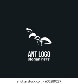 Ant Logo Design template. Vector Illustration