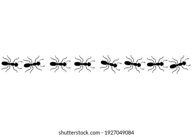 Ant trail seamless pattern. Clipart image