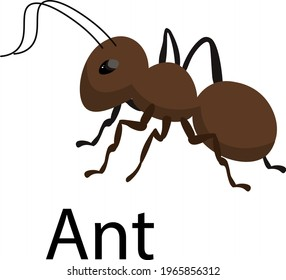 ant vector illustration, brown insect, illustration for children, books, printed products