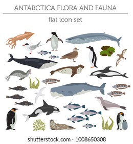 Antarctic, Antarctica flora and fauna flat elements. Animals, birds and sea life big set. Build your geography infographics collection. Vector illustration