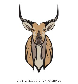 Antelope Bust