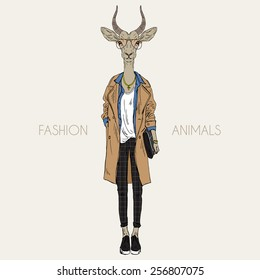 antelope dressed up in modern style, city look