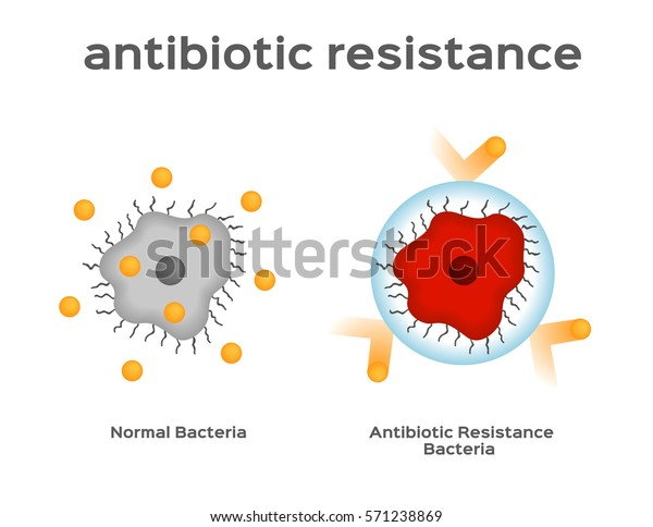 antibiotic resistance bacteria and virus vector