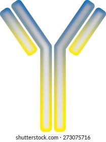 antibody molecule