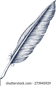Antique Quill Pen for writing