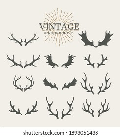 Antlers. Design elements of deer. Set of hand drawn deer horns on the white background. Vintage isolated icons