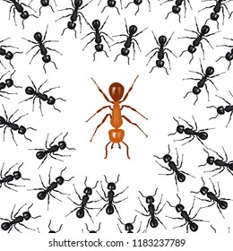 Ants organized in a group fight against a red ant. Concept of union is strength