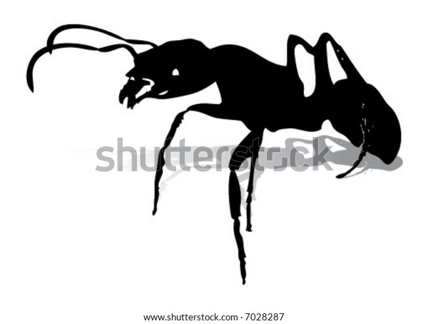 Ants Silhouette - High detail shadow separated into a different layer.
