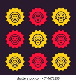 apes, monkey, chimps vector line icons