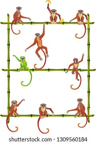 Apes sitting on bamboo branches, concept wildlife scene, apes vector set