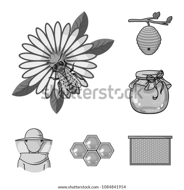 Apiary and beekeeping monochrome icons in set collection for design.Equipment and production of honey vector symbol stock web illustration.