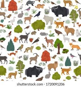 Apine tundra biome, natural region seamless pattern. Terrestrial ecosystem world map. Animals, birds and plants design set. Vector illustration