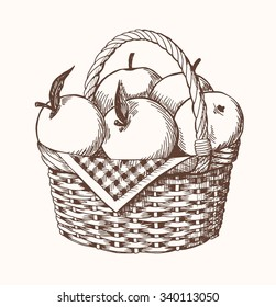 Apple basket classic drawing vector