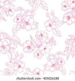 Apple flower in blossom; botanical vector Illustration; contour seamless pattern of spring flowers on white background; cherry pink blooming flowers