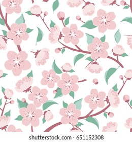 Apple flowers. Cherry flowers Branch. Seamless pattern. Vector Illustration
