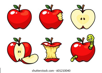 Apple fruit vector set.