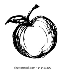 Apple icon sketch - vector