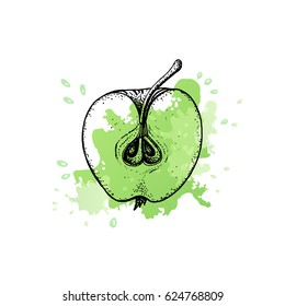 Apple slice in outline and green splash of juice. Hand drawn design for your logo, farmers market, organic food, herbal tea, cosmetics, health care product, sweets, pastry shop.