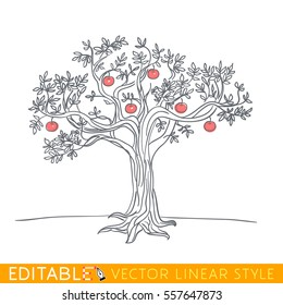 Apple tree drawing. Editable line sketch. Stock vector illustration.