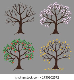 Apple tree during winter, spring, summer and autumn. Four seasons. Design element.