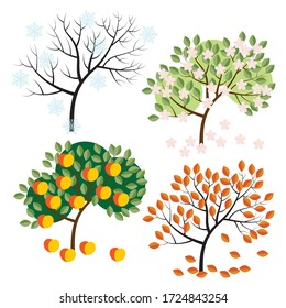Apple tree in four seasons-winter, spring, summer and autumn. a drawing in the style of the cartoon. stock vector illustration. EPS 10.
