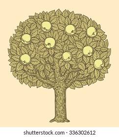 Apple tree. Hand drawn engraving. Vector vintage illustration. 8 EPS