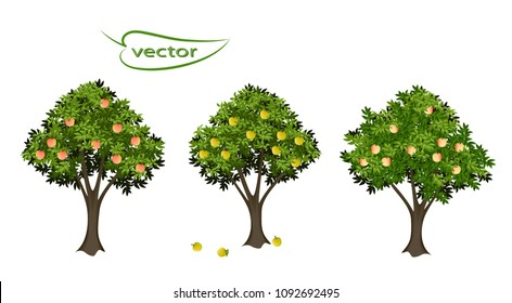 Apple tree, peach tree, 3D vector realistic images, garden fruiting plants with ripe fruit isolated to decorate the landscape of harvest time