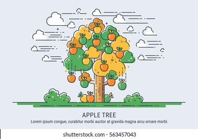 Apple tree. Season collecting apples. Thin lines vector illustration.