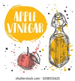 Apple vinegar concept design. Glass vintage bottle. Ink hand drawn vector illustration. Can be used for menu, shop, farmers market, restaurant, cafe, bar, poster, banner, sticker, placard.