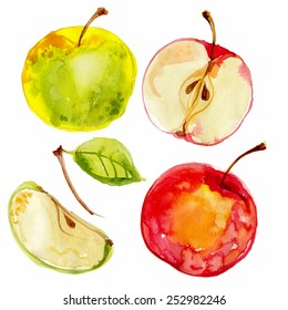Apples painted with watercolors on white paper. Red apple, green apple, leaf, half an apple. Vector watercolor